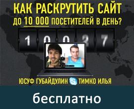 Как раскрутить сайт до 10 000 посетителей в день - интервью с Ильей Тимко - бесплатно!